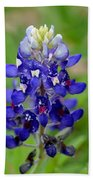 Texas Bluebonnets Bath Towel