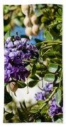 Texas Mountain Laurel Sophora Flowers And Mescal Beans Bath Towel