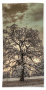 Texas Oak Tree Bath Towel