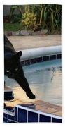 The Adventurous Feline Bath Towel