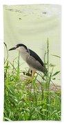 The Black-crowned Night Heron Bath Towel
