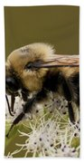 The Bumble Bee.. Bath Towel