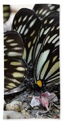 The Butterfly Gathering Bath Towel