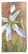 The Delicate Autumn Lady - Narcissus Serotinus Bath Towel