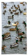 The Duck Pond Bath Towel