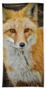 The Fox 8 Bath Towel