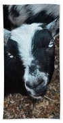 The Goat With The Gorgeous Eyes Bath Towel