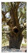 The Hole Tree Santa Margarita Lake Hand Towel