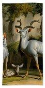 A Kudus Or Kudu Bath Towel