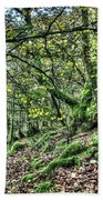 The Mossy Creatures Of The  Old Beech Forest 5 Bath Towel