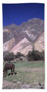 The Painters Palette Jujuy Argentina Hand Towel