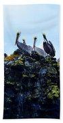 The Pelican Dance Bath Towel