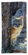 The Shy Fox Bath Towel