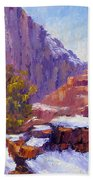 The Side Of The Road At Zion Bath Towel