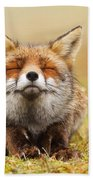 The Smiling Fox Hand Towel