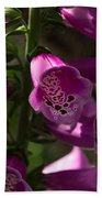 The Splendor Of Foxgloves Bath Towel