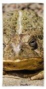 The Toad Bath Towel