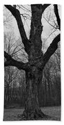 The Tree In The Park Bath Towel