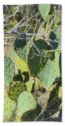 Cedar Park Texas Prickly Pear Cactus Bath Towel