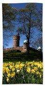 The Water Tower Bath Towel