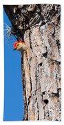 The Woodpecker Is In Bath Towel