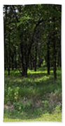 The Woods And The Road From The Series The Imprint Of Man In Nature Hand Towel