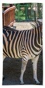 The Zebra Bath Towel