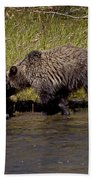 Thirsty Grizzlies  #3418 Bath Towel
