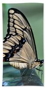 Thoas Swallowtail Butterfly Bath Towel