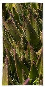 Thorns On Succulent Hand Towel