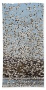 Thousands Of Snow Geese Bath Towel