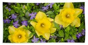 Three Daffodils In Blooming Periwinkle Bath Towel