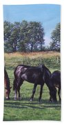 Three Horses In Field Bath Towel by Martin Davey