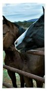 Three Horses Waiting For Carrots Bath Towel