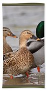Three Mallards Card - Ducks Bath Towel