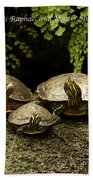 Three Turtles Bath Towel