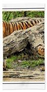 Tiger By The Log Bath Towel