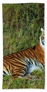 Tiger In The Grass Bath Towel