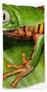 Tiger-legged Monkey Frog Bath Towel
