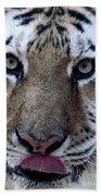Tiger Lick Hand Towel