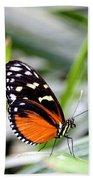 Tiger Longwing Butterfly Bath Towel