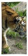 Tiger Stalking Bath Towel