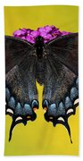 Tiger Swallowtail Butterfly, Dark Phase Bath Towel