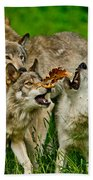 Timber Wolf Pictures 1593 Bath Towel