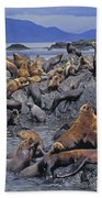 Tk0440, Thomas Kitchin Steller Sea Bath Towel