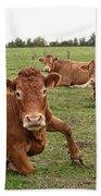 Tough Cows Bath Towel