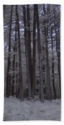 Towering Trees Over Ferns In Blue Bath Towel