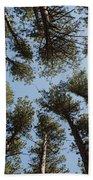 Towering White Pines Bath Towel