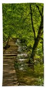 Trail In The Forest Bath Towel