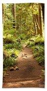 Trail Through The Rainforest Bath Towel